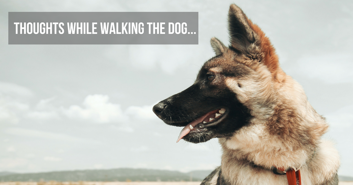 Thoughts While Walking the Dog....