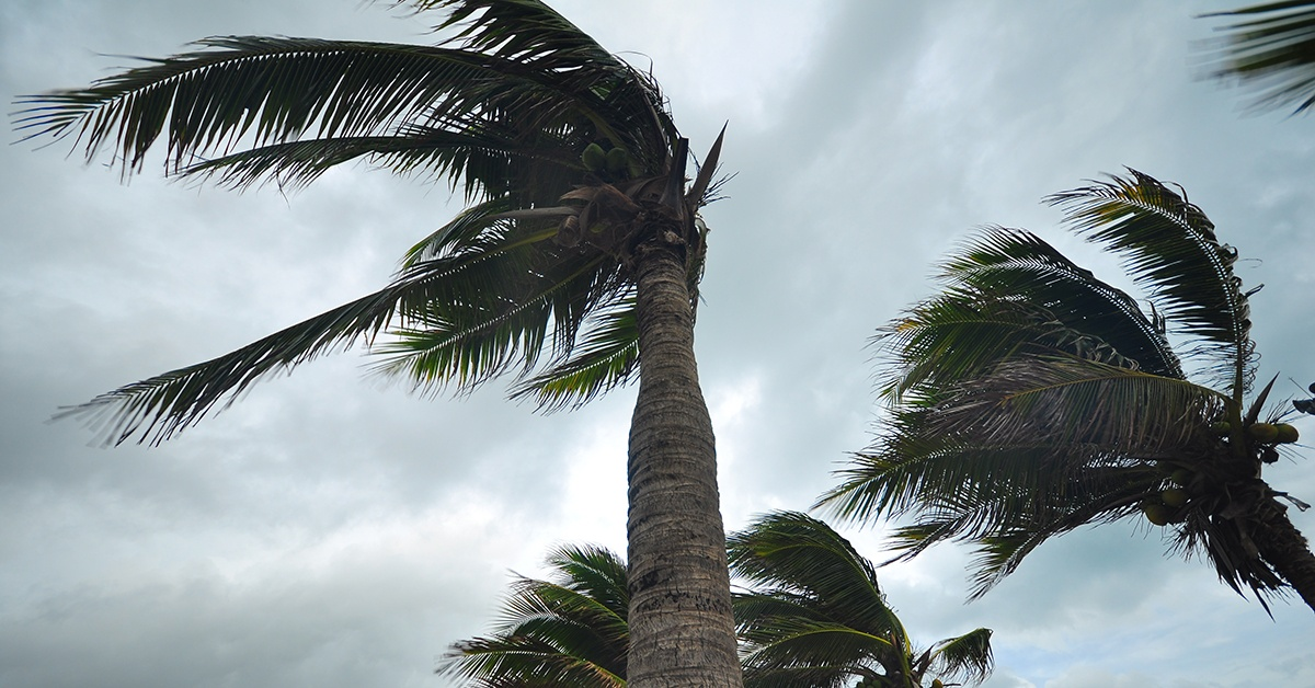 A Second Hurricane And Its Impact